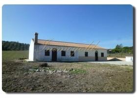 Immogold Ein großes Grundstück – auf dem Land-, mit einem Haus, nutzbar für zwei Wohnparteien.
