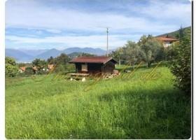 Immogold, großes Freizeitgrundstück mit Gartenlaube