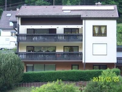 Schöne Ruhige 1 Zimmerterassenwohnung im Schwarzwald