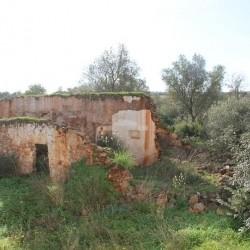 Grundstueck mit einer Ruine